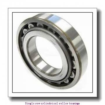 120 mm x 215 mm x 40 mm  NTN NU224 Single row cylindrical roller bearings