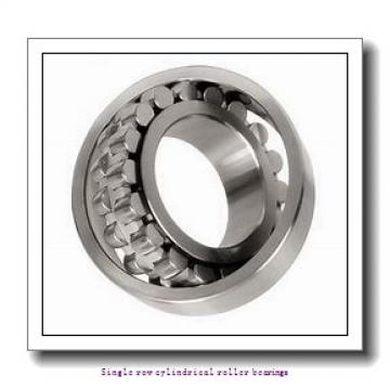 105 mm x 225 mm x 49 mm  NTN NJ321 Single row cylindrical roller bearings